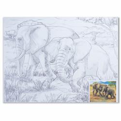 """Холст грунтованный на картоне (30*40см) 280г/м2, мелкое зерно, хлоп с конт """"слоны"""" 190631 Brauberg"""